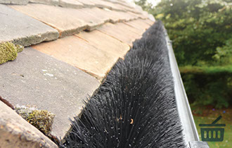 hedgehog gutter brush swindon